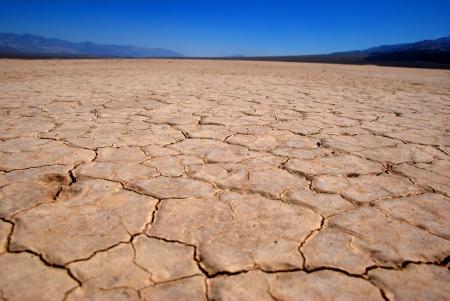 Wasser ist zum kostbaren Rohstoff geworden